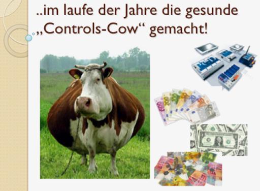 cow_2_512